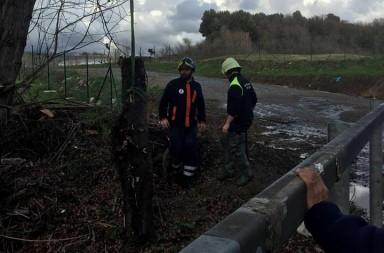 Dentro Magazine - Volontari rimuovono tronco dal fosso di san Gregorio