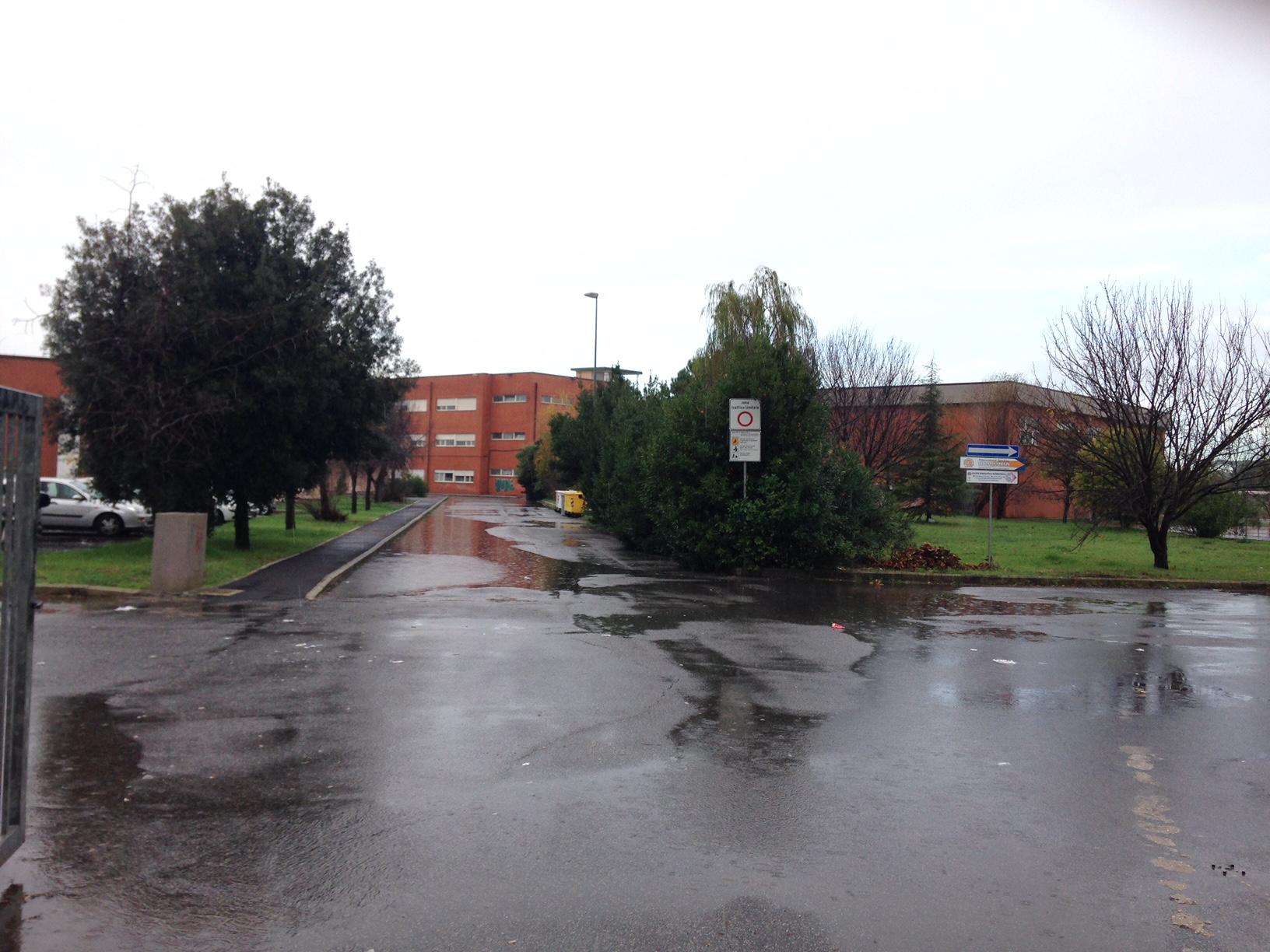 """Gli studenti dell'istituto """"Volta"""" danno i voti ai professori, è la prima scuola del Lazio"""