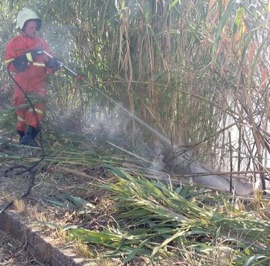 """Guidonia, si moltiplicano gli incendi nei terreni incolti. L'Sos dei volontari: """"Controlli per far rispettare le regole"""""""