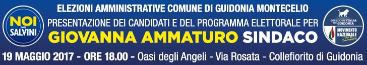 banner ammaturo