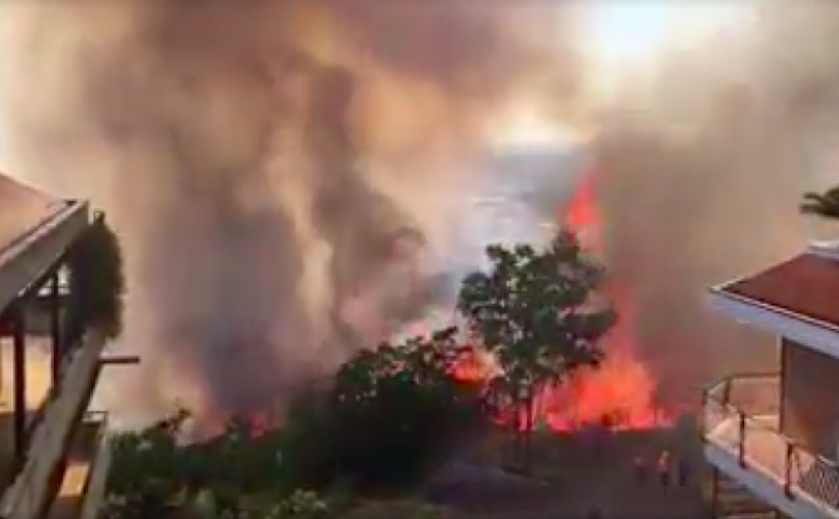 """Incendi, Coldiretti Lazio: """"Aumento record per siccità e abbandono campagne"""""""