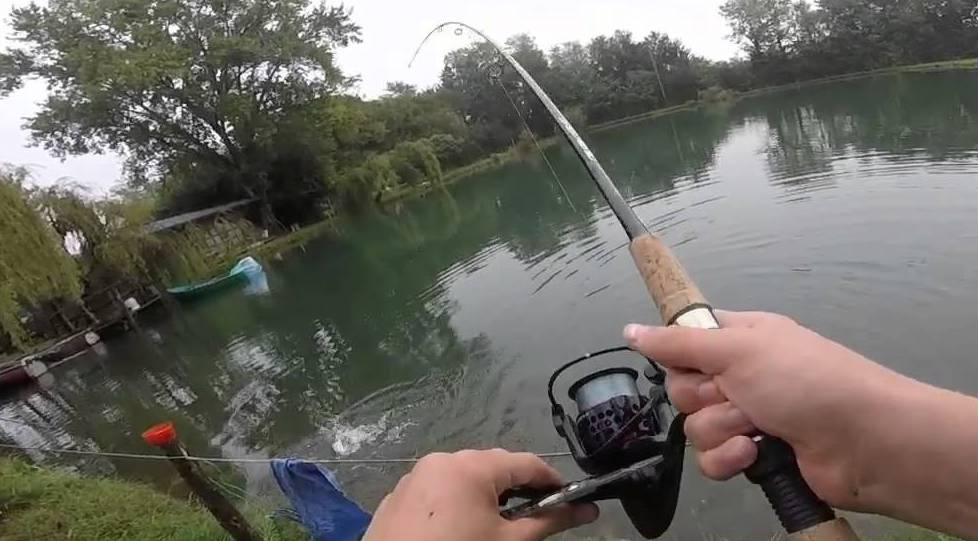 Pesca sportiva nel Lazio, 80mila trote rilasciate nei fiumi per il ripopolamento ittico