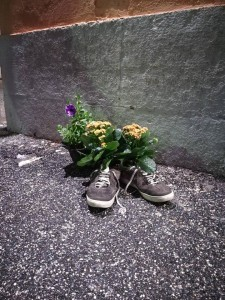 guerrillagardening5