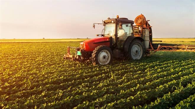 """Agricoltura, Copagri Lazio: """"Il Governo intervenga subito a sostegno del comparto"""""""
