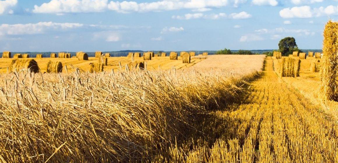 Accordo per la digitalizzazione agricola