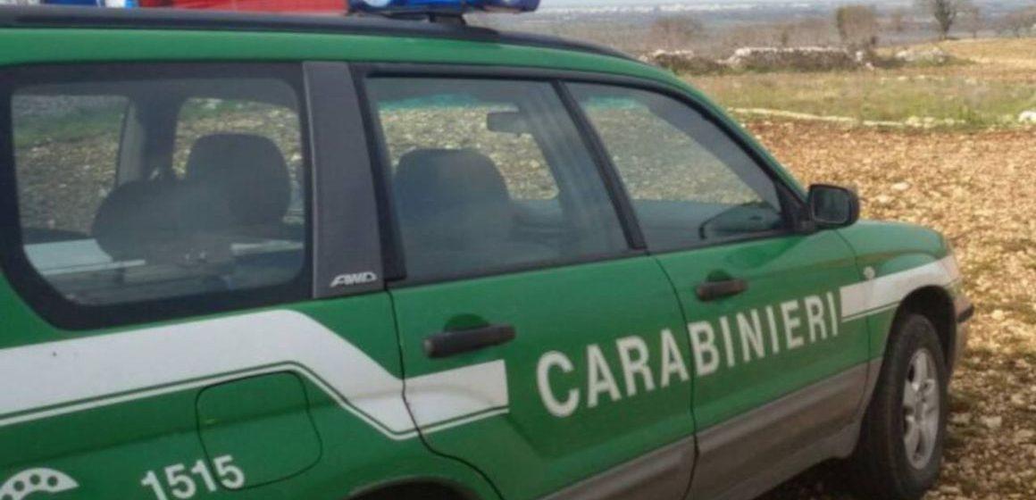 Guidonia, trasporto illecito di rifiuti: 5 denunce e tre sequestri
