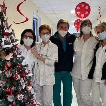 """Monterotondo, all'ospedale gli operatori attaccano sull'albero """"sorrisi"""""""