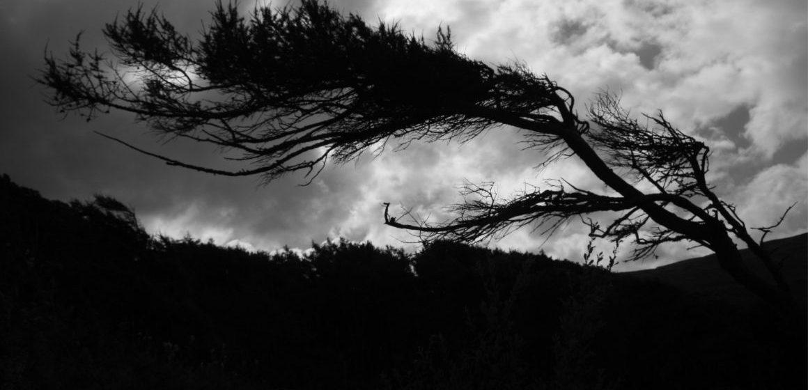 Maltempo, nel Lazio è allerta vento