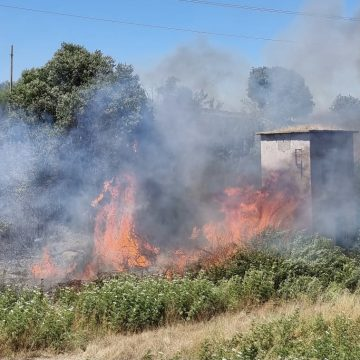Settecamini, grande incendio a ridosso dell'A24: cinque ettari in fumo