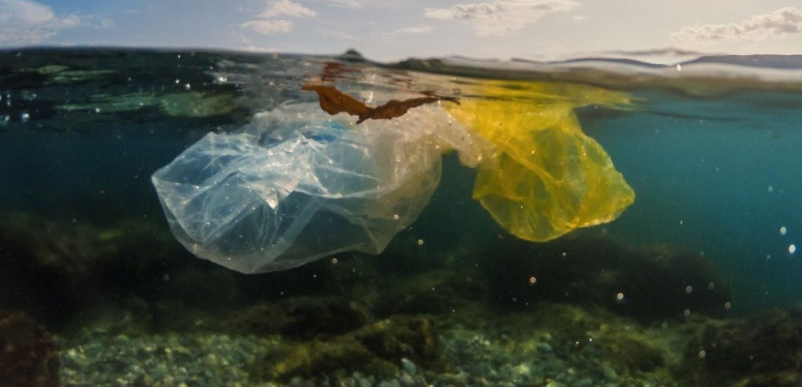 Lazio, raccolti 25mila chili di rifiuti in mare